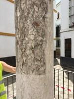 Ejemplo de las patologías que presentaba la columna romana del monumento a las Tres Cruces
